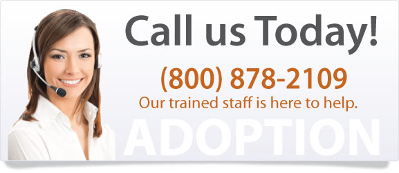 Support to help with stepparent adoption.